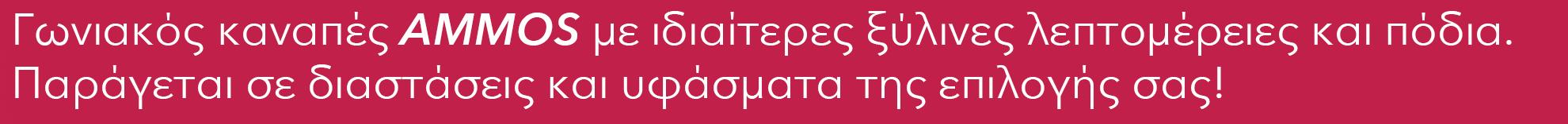 slide2_tag.jpg